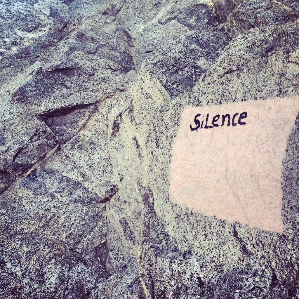 Found on a rock by the stairs leading up to the Stupa