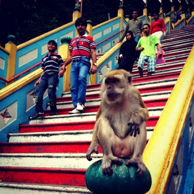 Sharing the stairs at the Batu Caves, Kuala Lumpur, Malaysia